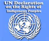 logo-un-decl-on-the-rights-of-indigenous-peoples